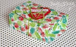 Kreativ-Stanz Designerpapier Sommerbeeren Stempelset Fruchtige Grüsse von Stampin' Up! BlogHop Ideenreich durchs Jahr Verpackung Origamibox #stampinup #ideenreichdurchsjahr https://kreativstanz.wordpress.com